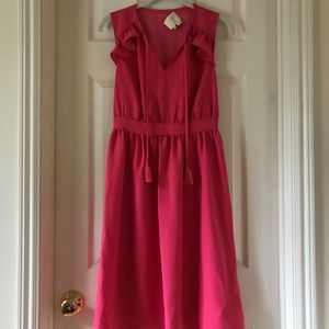 Kate Spade Pink Fit and Flare Dress XS
